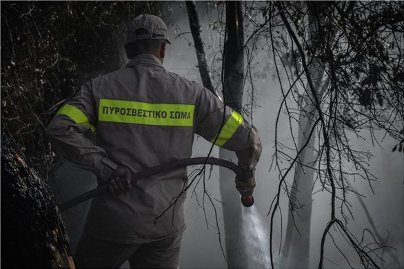 Δυτική Ελλάδα: Μεγάλη η περιβαλλοντική καταστροφή από τη φωτιά στην Αρχαία Ολυμπία (φωτο)