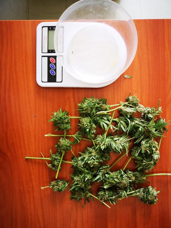 Συνελήφθη 39χρονος στην Αιτωλοακαρνανία για καλλιέργεια και κατοχή ναρκωτικών
