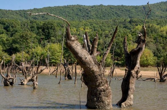Λίμνη της Σκήτης: Εκπληκτική ομορφιά… κατά λάθος! (φωτο)