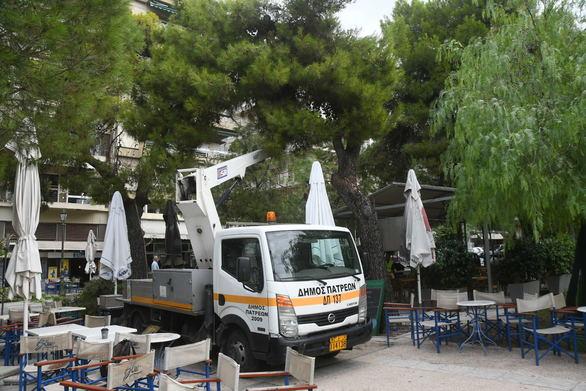 Πάτρα - Ξεκίνησε το κλάδεμα των πεύκων στην πλατεία Υψηλών Αλωνίων (φωτο)