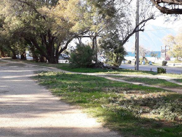 Για περπάτημα στο έλος της Αγυιάς (φωτο)
