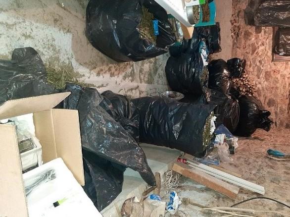 Εξαρθρώθηκε κύκλωμα που διακινούσε μεγάλες ποσότητες κάνναβης και στην Αχαΐα (φωτο+video)
