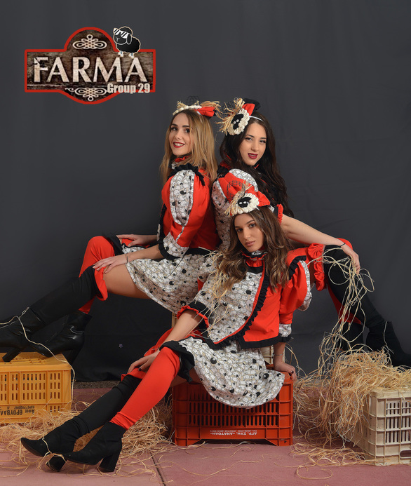 "Group 29: ""Farma"""