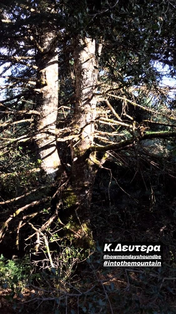 Ζέτα Μακρυπούλια: Απόδραση στη Λίμνη Δόξα με τους διάσημους φίλους της (pics+video)