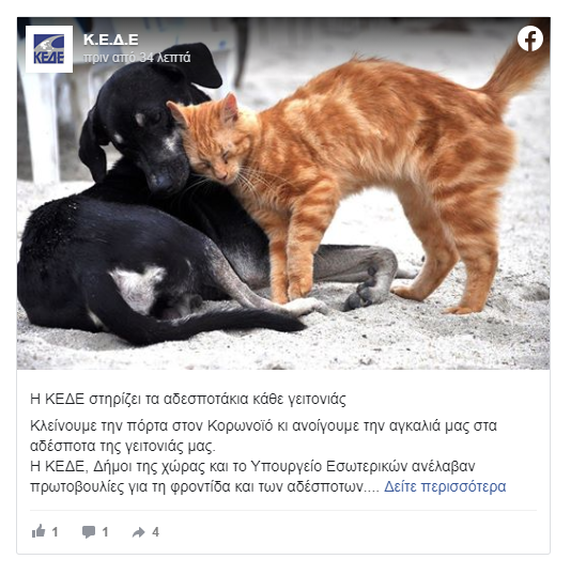 Κορωνοϊός: Στην ιστοσελίδα της ΚΕΔΕ η βεβαίωση για τη φροντίδα αδέσποτων ζώων