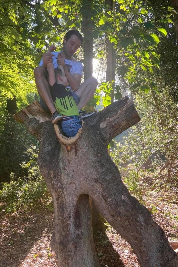 4χρονος κόλλησε σε δέντρο, στην πρώτη εκδρομή μετά το lockdown (φωτο)
