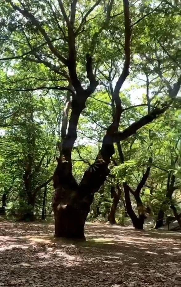 Κατερίνα Γερονικολού - Εκδρομή στο μαγευτικό Πλανητέρο στα Καλάβρυτα! (φωτο)