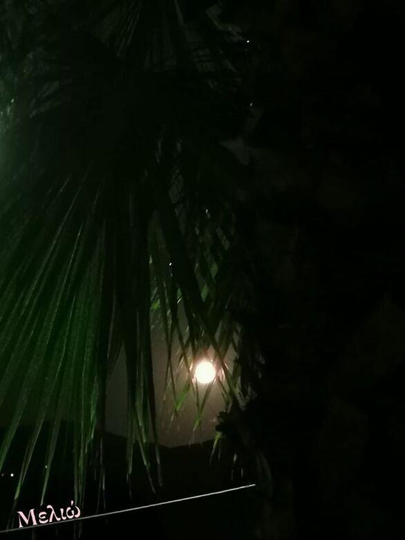 Φωτό - Μελιώ Κατσιφάρα
