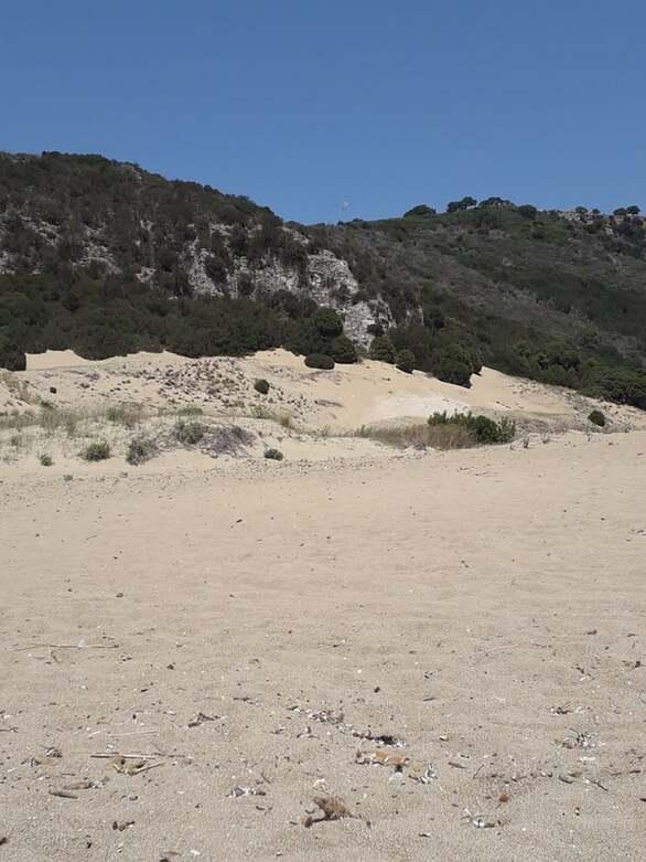 Σαν την παραλία στον αμμόλοφο της Καλογριάς δεν έχει... (φωτο)