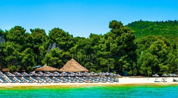 Η παραλία Κουκουναριές στο νοτιοδυτικό άκρο της Σκιάθου -γνωστή και με το όνομα «Χρυσή Άμμος»- είναι η πιο διάσημη του νησιού. Εκτός από τα καταγάλανα, πεντακάθαρα νερά και τη χρυσαφένια άμμο, η παραλία φημίζεται και για το πυκνό δάσος των Κουκουναριών που σταματάει λίγα μέτρα από τη θάλασσα και τον υδροβιότοπο της Στροφιλιάς. Η παραλία είναι καλά οργανωμένη, ενώ στην περιοχή θα βρείτε πλήθος καταλυμάτων, καθώς και πολλές ταβέρνες και καφέ.