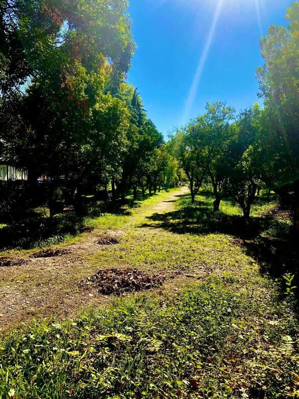 Ο κήπος στο κέντρο της Πάτρας που σε πάει στην εξοχή και σε γαληνεύει!