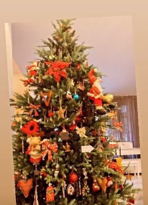 Η Βάσω Λασκαράκη στόλισε το Χριστουγεννιάτικο δέντρο της