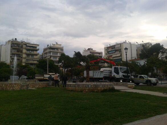 Πάτρα: Μπήκαν οι πρώτοι νέοι φοίνικες στα Ψηλαλώνια - Η πλατεία «ντύνεται ξανά! (φωτο)