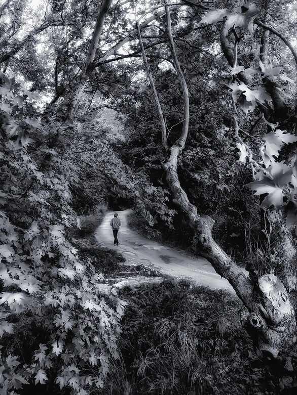 Η φωτογραφία που αποτυπώνει κάθε έννοια της καραντίνας τραβήχτηκε στην Πάτρα!
