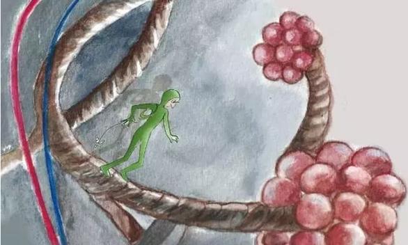 Πανεπιστήμιο Πατρών - «Ξενιστής σε άμυνα»: Ένα εικονογραφημένο βιβλίο για το ταξίδι των ιών