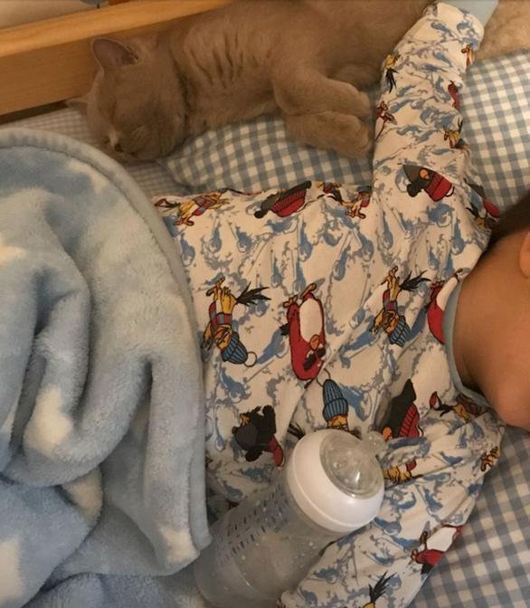 Φαίη Σκορδά - Πόσταρε άγνωστη φωτογραφία του γιου της μωρό με τη γάτα τους