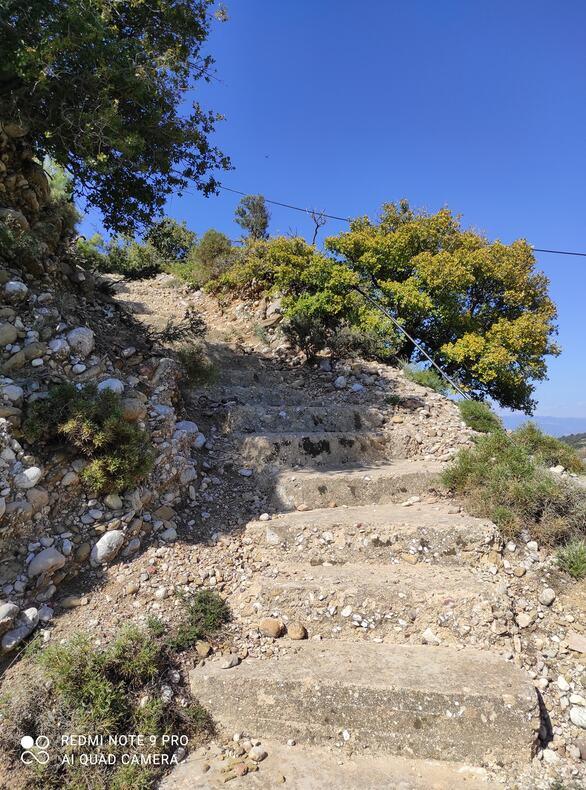 Άνοιξη και ο λόφος του Αγίου Ανδρέα έξω από την Πάτρα έχει «ανθίσει» (pics)