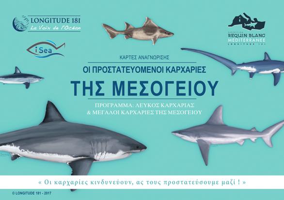Περιβαλλοντικοί Φορείς καλούν το ΥΠΑΑΤ να εφαρμόσει τη νομοθεσία σχετικά με την προστασία των καρχαριών