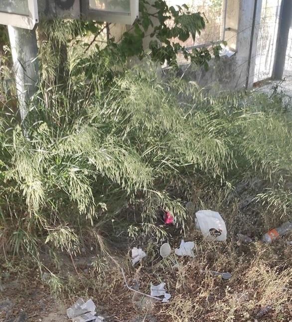 Χόρτα, σκουπίδια και κίνδυνος φωτιάς στο χώρο γύρω από το ΠΓΝ Πατρών (φωτο)