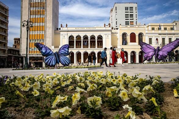Οι πεταλούδες έφυγαν από την πλατεία Γεωργίου - Μετά από αυτές τι;