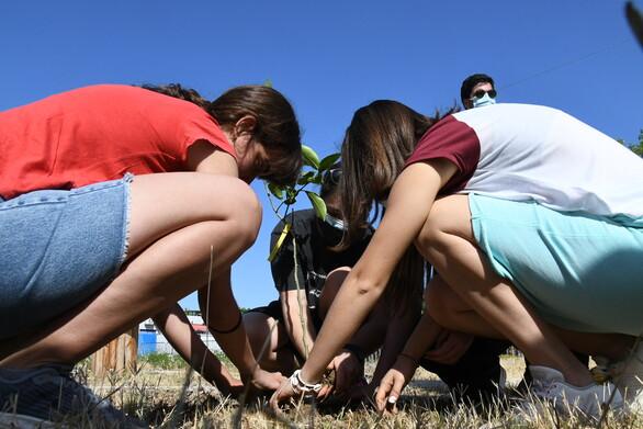 """Πάτρα - """"Δες το Σφαιρικά"""": Μαθητές φύτεψαν δέντρα στο Πάρκο Εκπαιδευτικών Δράσεων (φωτο)"""