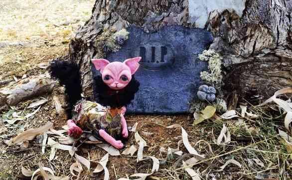 Curiosity Killed The Cat στην Γκαλερί Cube