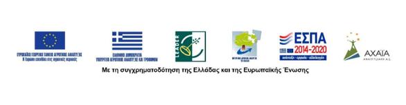 Η ΑΧΑΪΑ - ΑΝΑΠΤΥΞΙΑΚΗ Α.Ε. συμβάλλει στη διαμόρφωση του Οράματοςγια τις Αγροτικές Περιοχές της Ευρώπης
