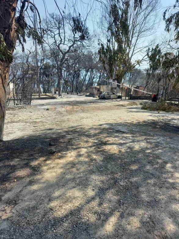Φωτιά Αιγιάλεια: Το μέγεθος της καταστροφής στο Λαμπίρι (φωτο)