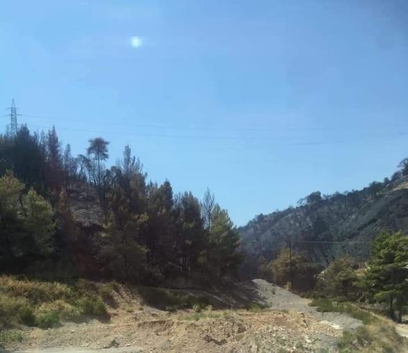 Μόνο στάχτη στα χωριά της Δυτικής Αιγιάλειας - Δείτε φωτογραφίες