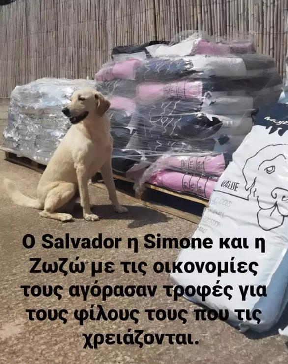Λεωνίδας Κουτσόπουλος: Η κίνηση αγάπης στα πυρόπληκτα ζώα