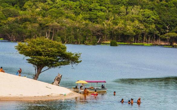 Το μεγαλύτερο και πιο πλούσιο σε βιοποικιλότητα φυσικό καταφύγιο στον κόσμο καταλαμβάνει σχεδόν το ήμισυ της Βραζιλίας, σε μια έκταση περισσότερων από 4 εκατομμυρίων τετραγωνικών χιλιομέτρων. Με λίγη τύχη, μπορείτε να δείτε τζάγκουαρ, ροζ δελφίνια και βίδρες. Απλά πάρτε μαζί σας ισχυρό απωθητικό κουνουπιών.