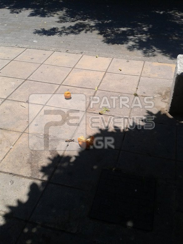 Πάτρα: Γέμισε η Τριών Ναυάρχων από σαπισμένα νεράτζια - Δείτε φωτογραφίες