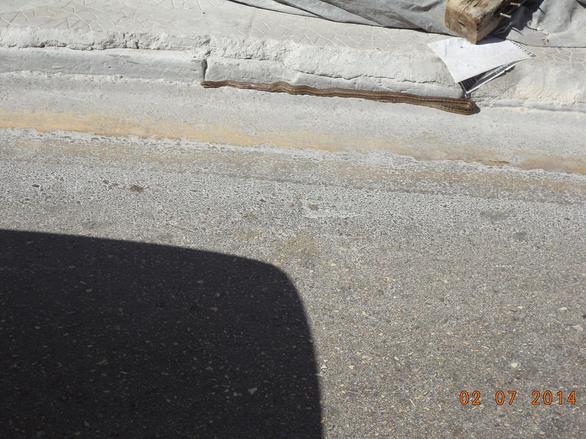 Απίστευτο: Το... φιδάκι της οδού Αράτου της Πάτρας – Δείτε φωτογραφίες