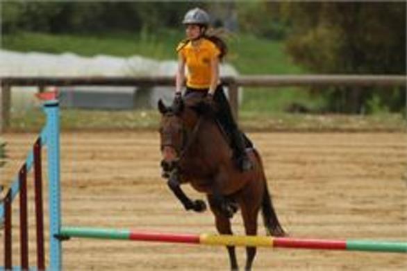 9ος Ιππικός Παμπελοποννησιακός αγώνας στον Πατραϊκό ιππικό όμιλο