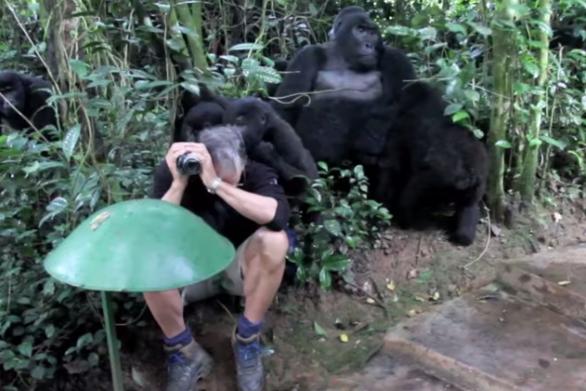 Ο φωτογράφος που είχε μια αναπάντεχη συνάντηση στο δάσος! (video)