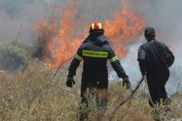 Αχαΐα: Φωτιά στην Ακράτα - Στο σημείο 8 οχήματα της Πυροσβεστικής