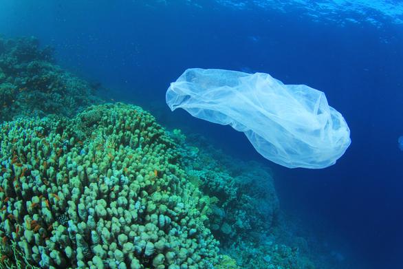 Σ.Π.Ο.Α.Κ.: Τα θέματα που συζητήθηκαν στην Ειδική Μόνιμη Επιτροπή Προστασίας Περιβάλλοντος της Βουλής