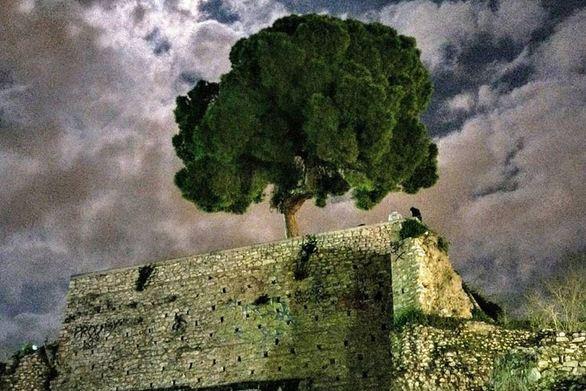 Πάτρα - Αυτοί που πηδούν τους φράχτες