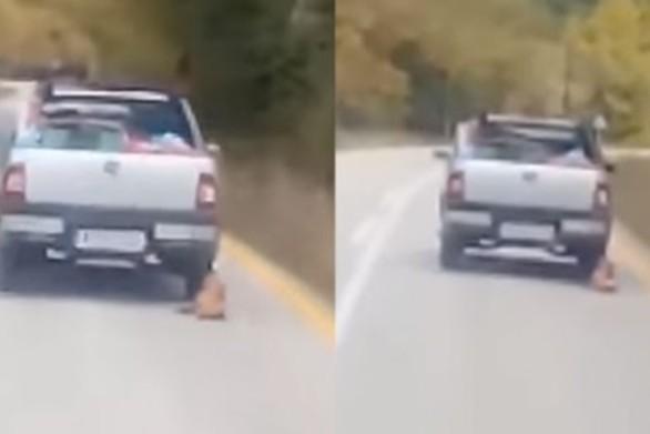 Καλάβρυτα: Πιάστηκε ο οδηγός που έσερνε σκύλο με το αμάξι του!