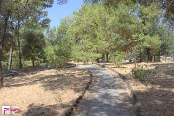 Πάτρα - Εθελοντική δράση για να καθαριστεί η περιοχή του Δασυλλίου!