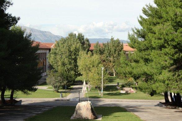 Πάτρα: Φόβος και τρόμος η Πανεπιστημιούπολη τις νύχτες για τους φοιτητές