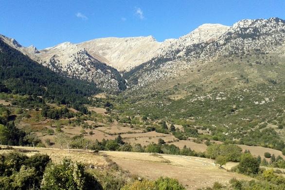 """Οικολογική Δυτική Ελλάδα: """"Μόνη οδός η βιωσιμότητα""""!"""