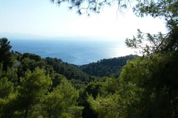 Δυτική Ελλάδα: Απαγορεύεται η κυκλοφορία στις δασικές περιοχές
