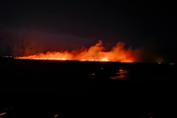 Αχαΐα: Ολονύχτια μάχη με τις φλόγες στην περιοχή της Στροφυλιάς