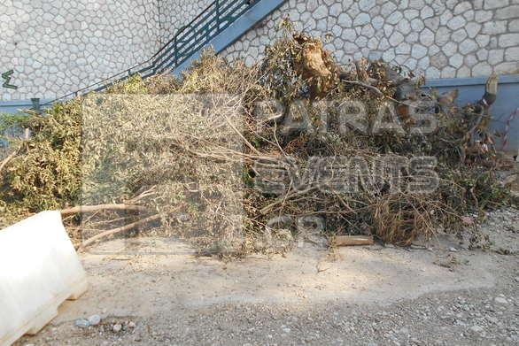 Τα πεταμένα κλαδιά το κυρίαρχο στοιχείο αισθητικής σε πολλά σημεία της Πάτρας!