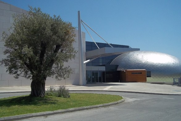 Πάτρα: Μια ξεχωριστή έκθεση θα παρουσιαστεί στο Αρχαιολογικό Μουσείο