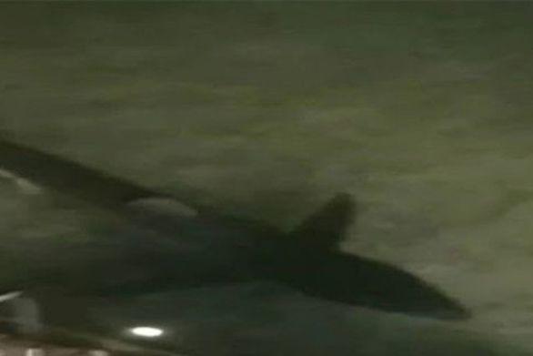 Καρχαρίας δύο μέτρων έφερε... τρομάρα στο Λουτράκι ! (vids)