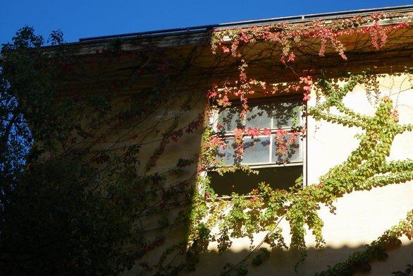 Πάτρα: SOS από το κτίριο του Παλαιού Αρσακείου που καταρρέει με αργό θάνατο  (pics)