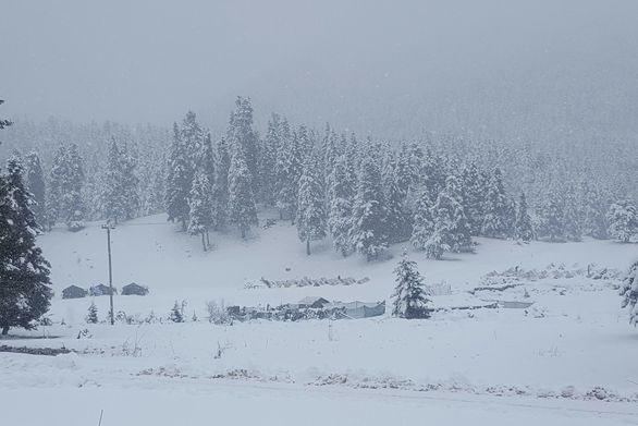 Στο ένα μέτρο το χιόνι στο Περτούλι Τρικάλων