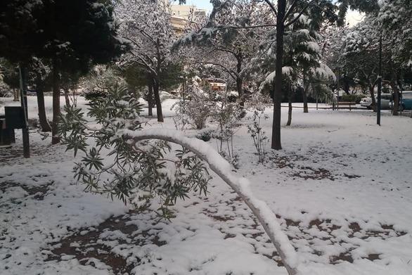 Κάτι από... Ελβετία το πάρκο στους Αμπελόκηπους στο κέντρο της Αθήνας (pics)
